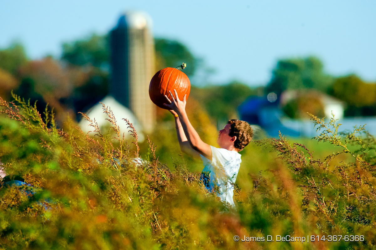 Ty Wallace, 12, Pickerington, tosses a pumpkin in the air in the fields of Lynd's Fruit Farm in Licking County Saturday afternoon October 20, 2007. (© James D. DeCamp | http://www.JamesDeCamp.com | 614-367-6366) [Photographed with Canon 1D MkII cameras in RAW mode with L series lenses] POY2007 Entry