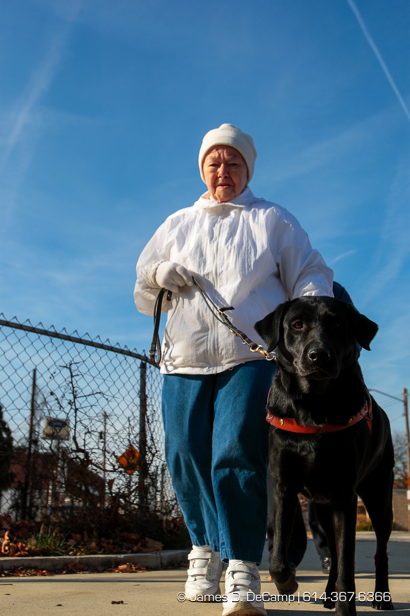 Elaine Brittain and Dee Dee go for a walk Wednesday morning December 3, 2008. (© James D. DeCamp | http://www.JamesDeCamp.com | 614-367-6366) [Photographed with Canon 1D MkIII cameras in RAW mode with L series lenses]