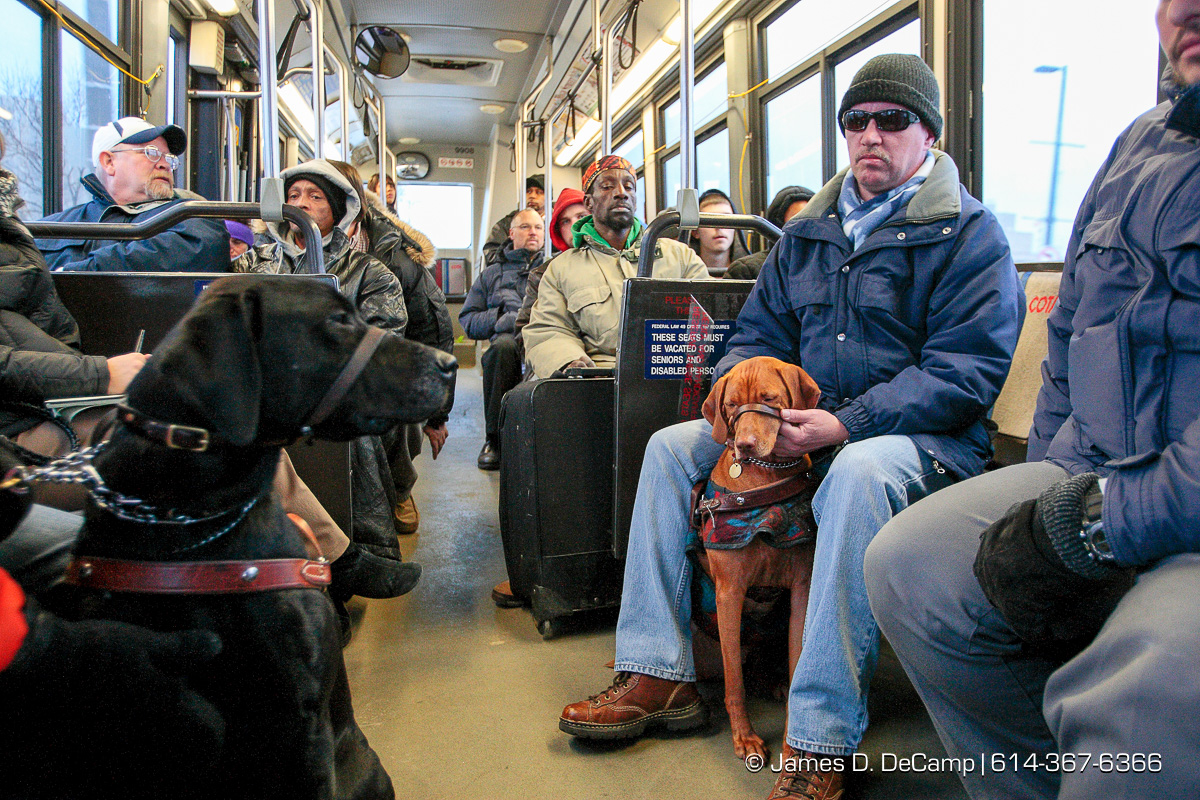 Randy Bailey and his guide dog Brice, right, ride a COTA bus downtown from Pilot Dogs, Inc for a downtown walk Friday morning December 12, 2008. (© James D. DeCamp | http://www.JamesDeCamp.com | 614-367-6366) [Photographed with Canon 1D MkIII cameras in RAW mode with L series lenses]