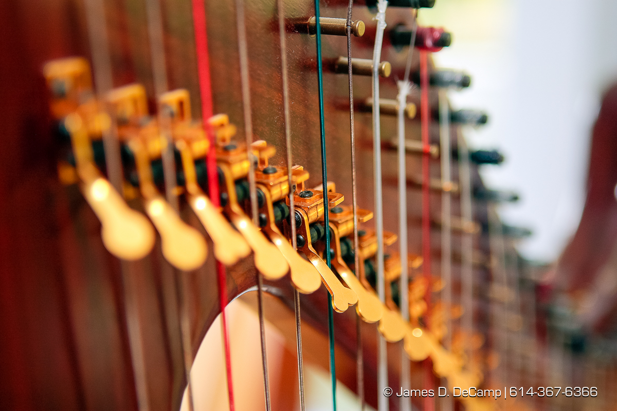 Detail of the neck of one of the Harp's of Praise harps photographed Wednesday evening October 1, 2008 at the Hostetler's home north of Coshocton. (© James D. DeCamp | http://www.JamesDeCamp.com | 614-367-6366) [Photographed with Canon 1D MkIII cameras in RAW mode with L series lenses]